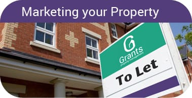 Marketing-your-Property